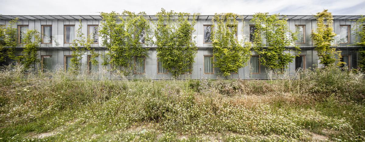 H arquitectes data ae student housing in sant cugat - Arquitectura sant cugat ...