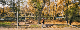 estudi08014 > Landscape regeneration of Camí de Cabrianes
